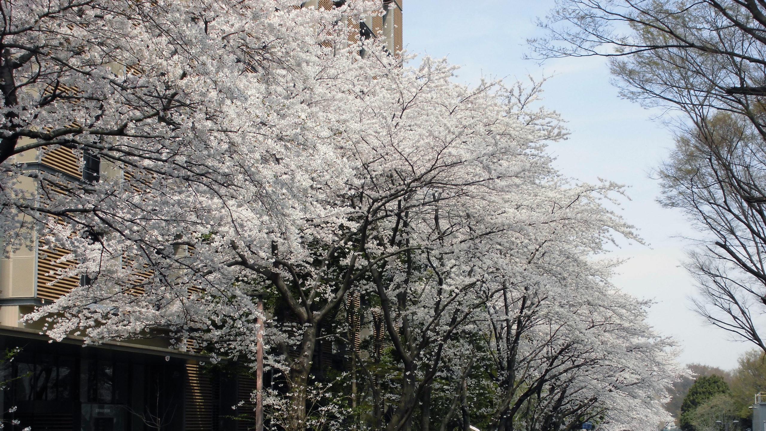 LIXIL Ushioda East Asian Humanities Initiative(LIXIL潮田東アジア研究拠点)