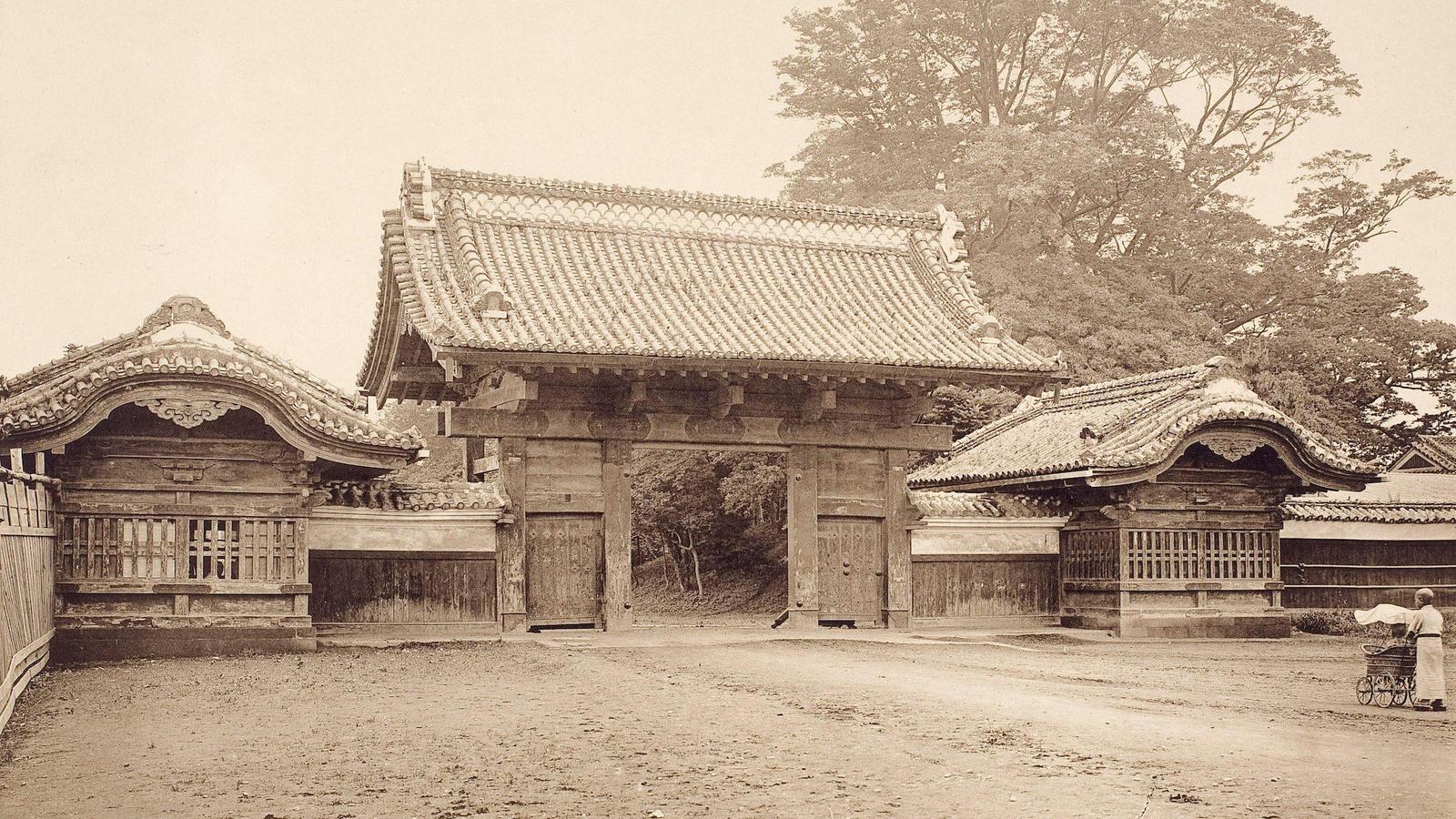 学術資産としての東京大学